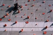 Seize - Dennis Adams (2005)