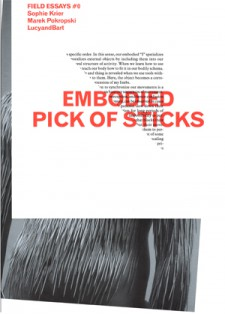 Embodied Pick of Sticks (2010)