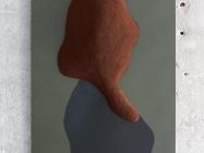 Miciel van Nieuwkerk, Hidden Portraits, 2014:2015